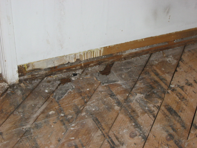 Hardwood floor water damage cupping wood floors for Hardwood floors cupping